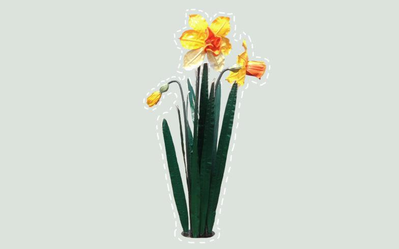 2-daffodil-lichtgroen