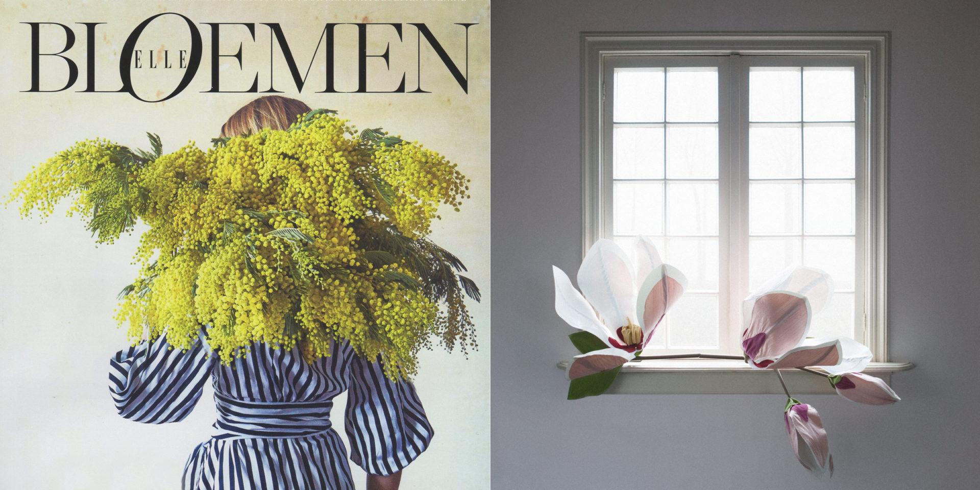 2-elle-bloemen-nieuwspagina