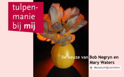2-tulpenmania-nieuws