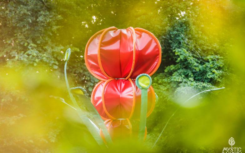 2-zaadbollen-rood