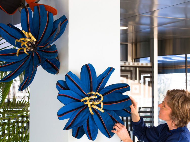 Flowers for KLM, Royal Dutch Airlines