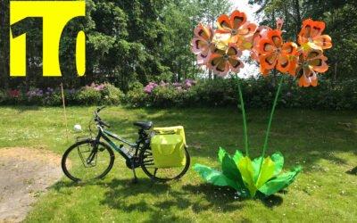 10th anniversary: primrose give away